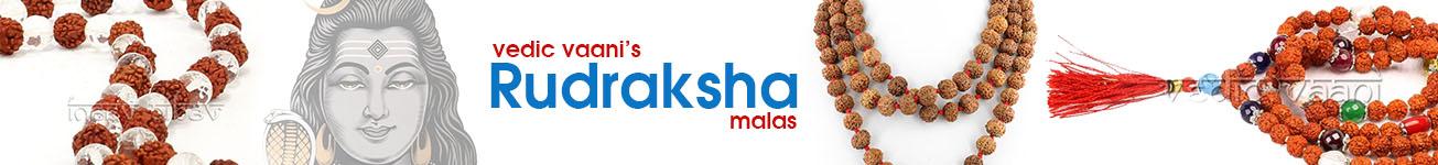 Rudraksha Kantha Malas