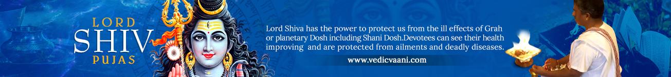 Lord Shiva Pujas